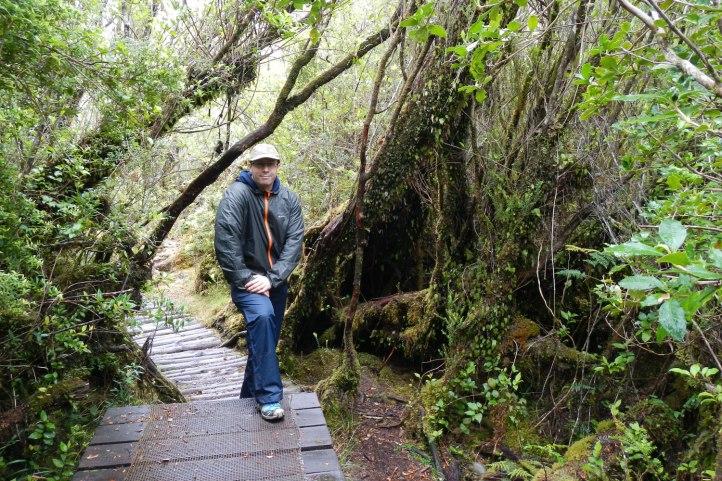 parque-nacional-chiloe2